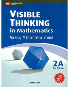 Visible Thinking in Mathematics 2A (2nd edition)