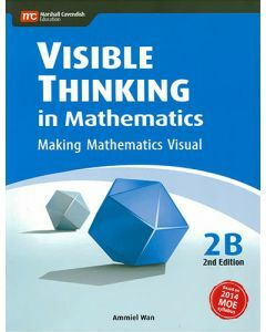 Visible Thinking in Mathematics 2B (2nd edition)