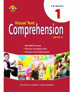 Visual Text Comprehension 1