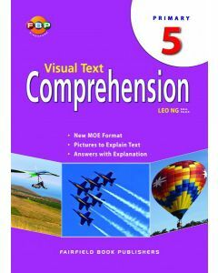 Visual Text Comprehension 5